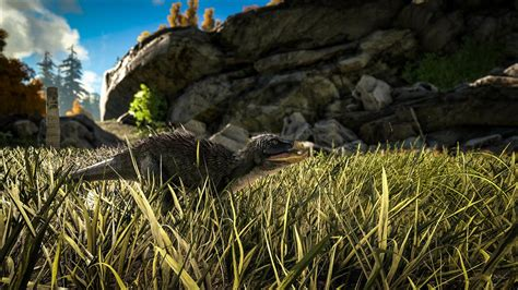 'Ark: Survival Evolved' Update 503 Released On PS4: Patch